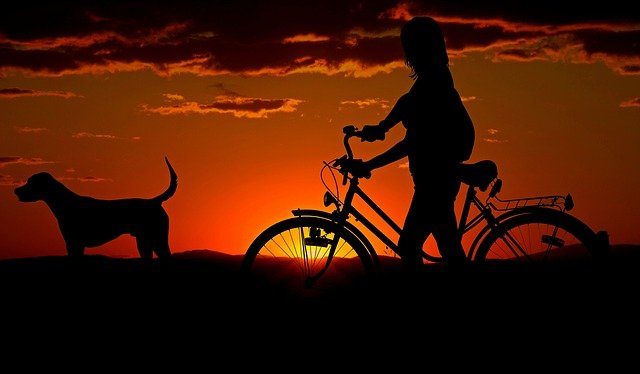 bagaznik rowerowy na hak